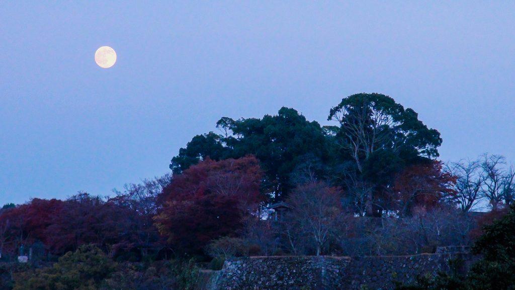 岡城 荒城の月